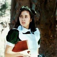 El laberinto del fauno (Mercedes Márquez)